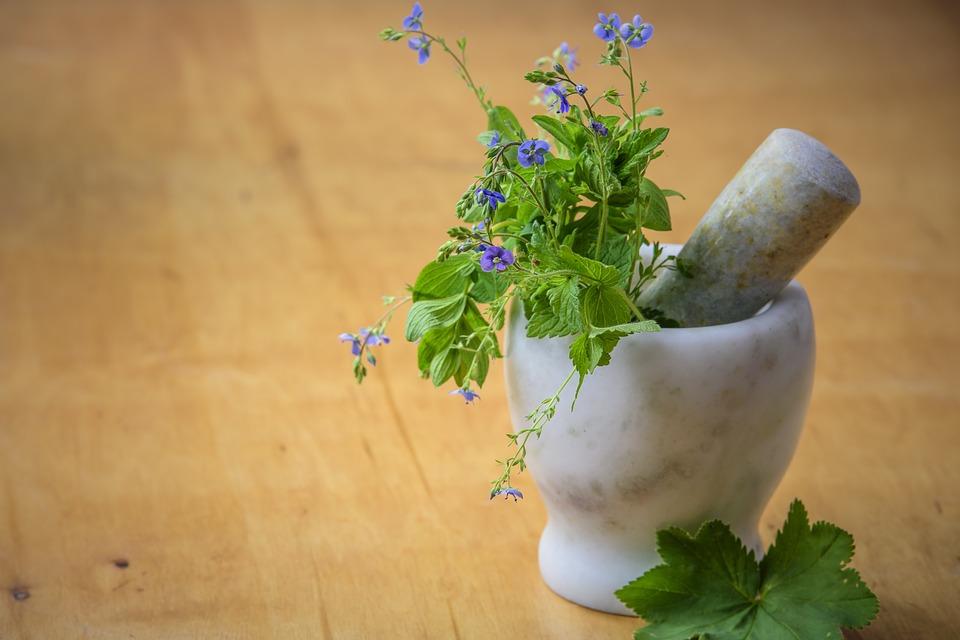 proste w wytworzeniu zioła szwedzkie